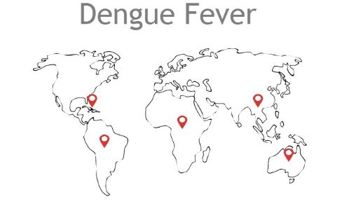how to know if you are recovering from dengue