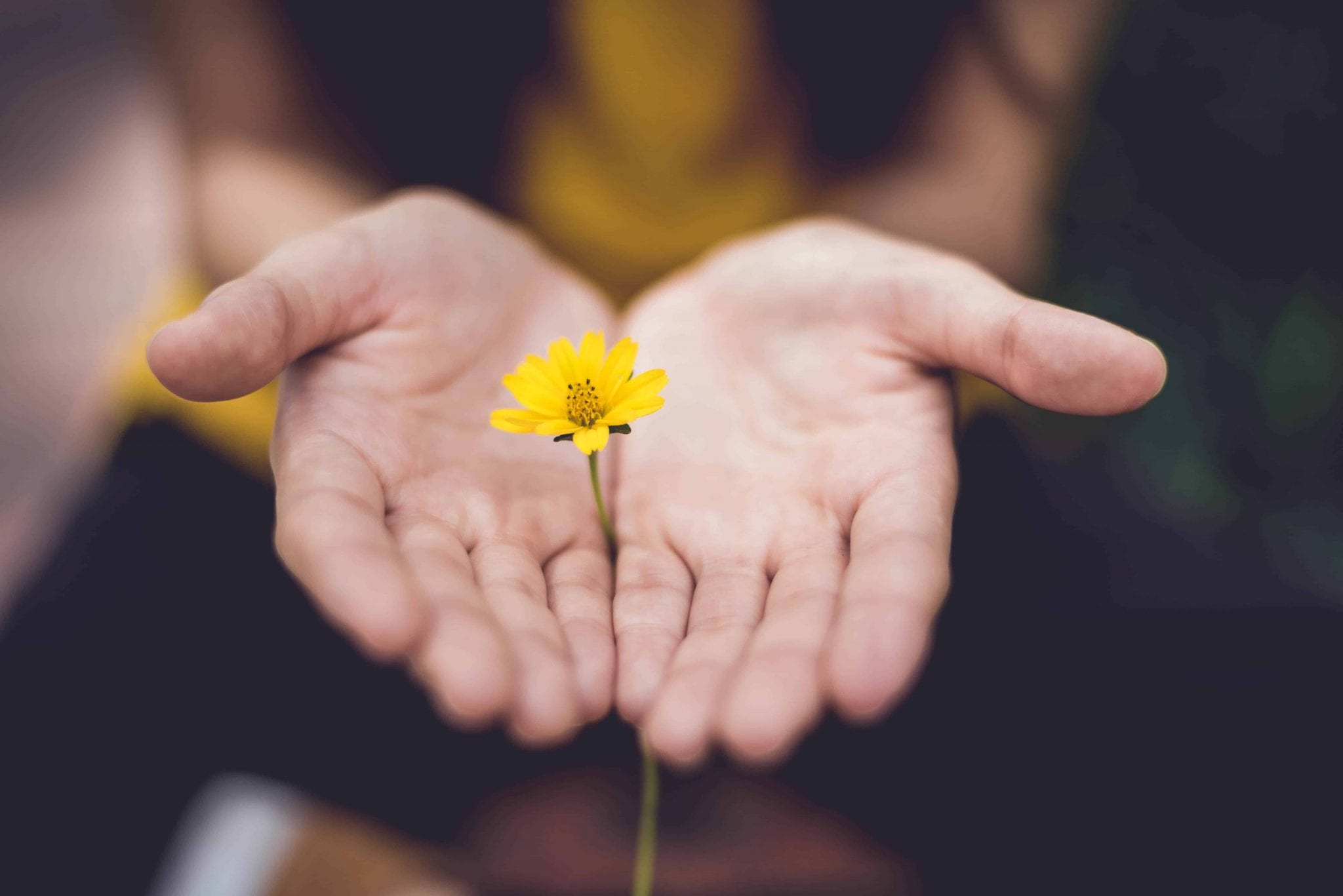 11 Inspirational Bible Verses About Giving Generously